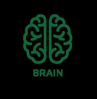 Brain__text