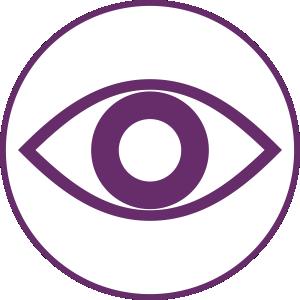 VISION-icon-1