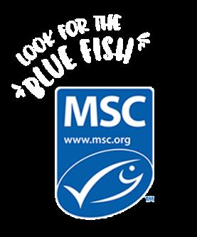 MSC logo.fw