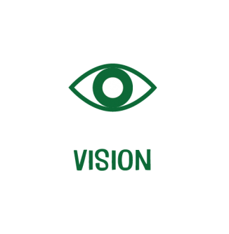 Vision_text